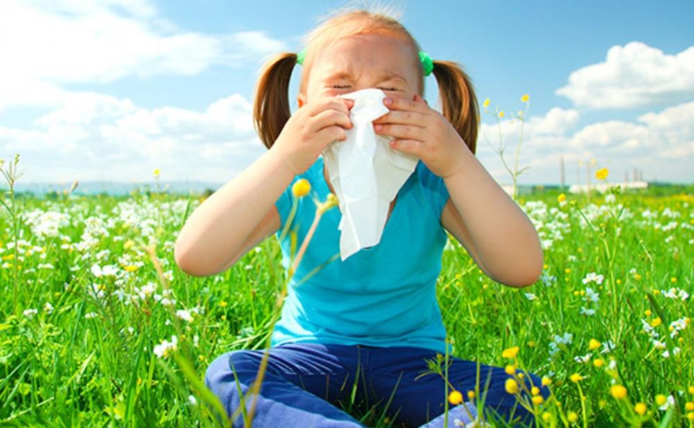 Allergiya bəlasından xilas olun